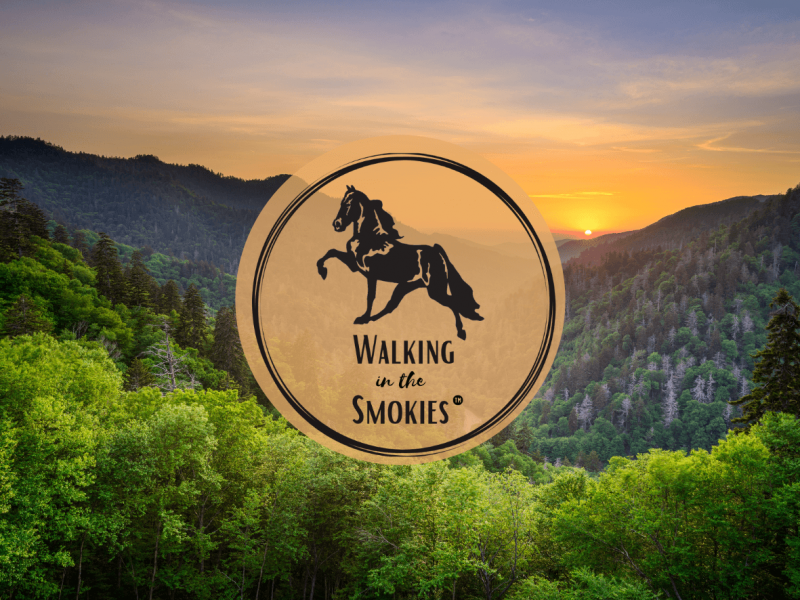 Sevierville Tennessee Event Walking In The Smokies